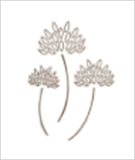 5. White clover